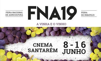 FNA Portogallo 2019