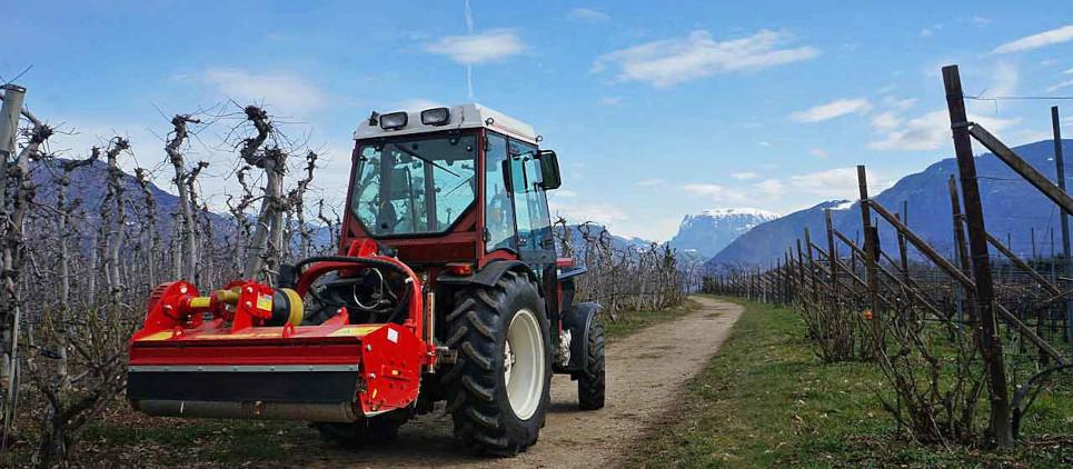 Among the most popular mulchers for orchards or vineyards