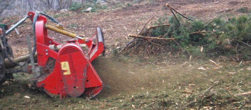 La forte petit broyeur forestier pour de gestion de la végétation.