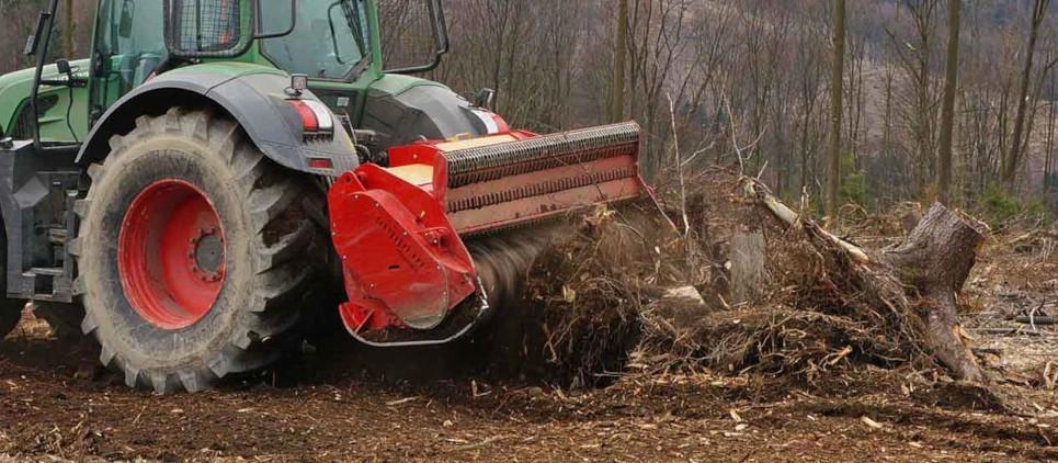 Pulizie del bosco dopo la raccolta.