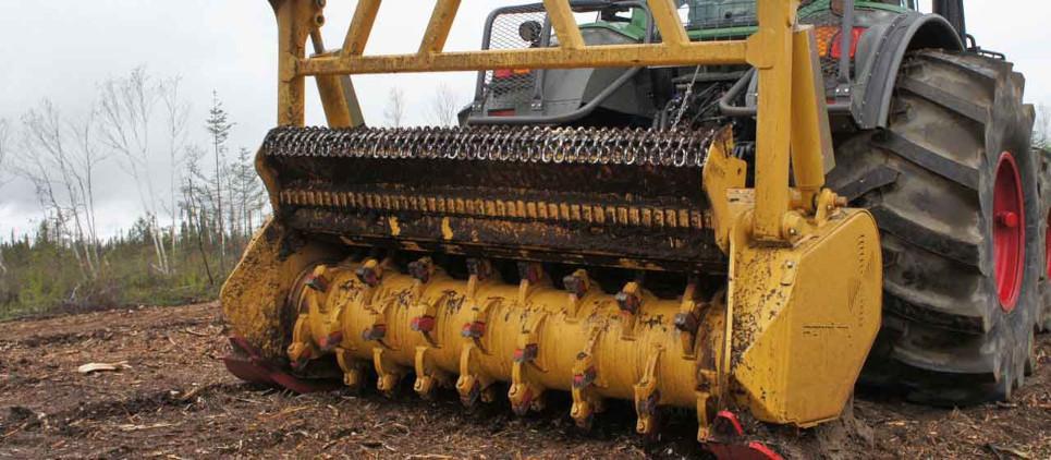 Mulcht Holz bis 50 cm Ø
