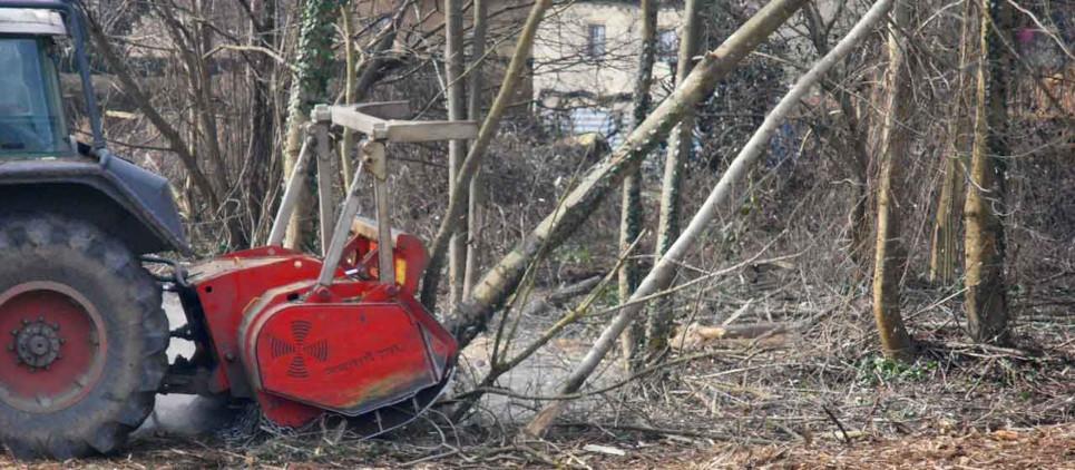Broyage de bois jusqu'à 50 cm Ø