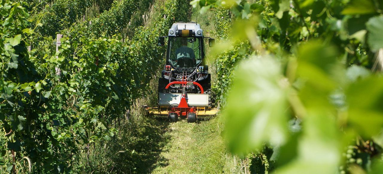 Vineyards & Orchards Video Player